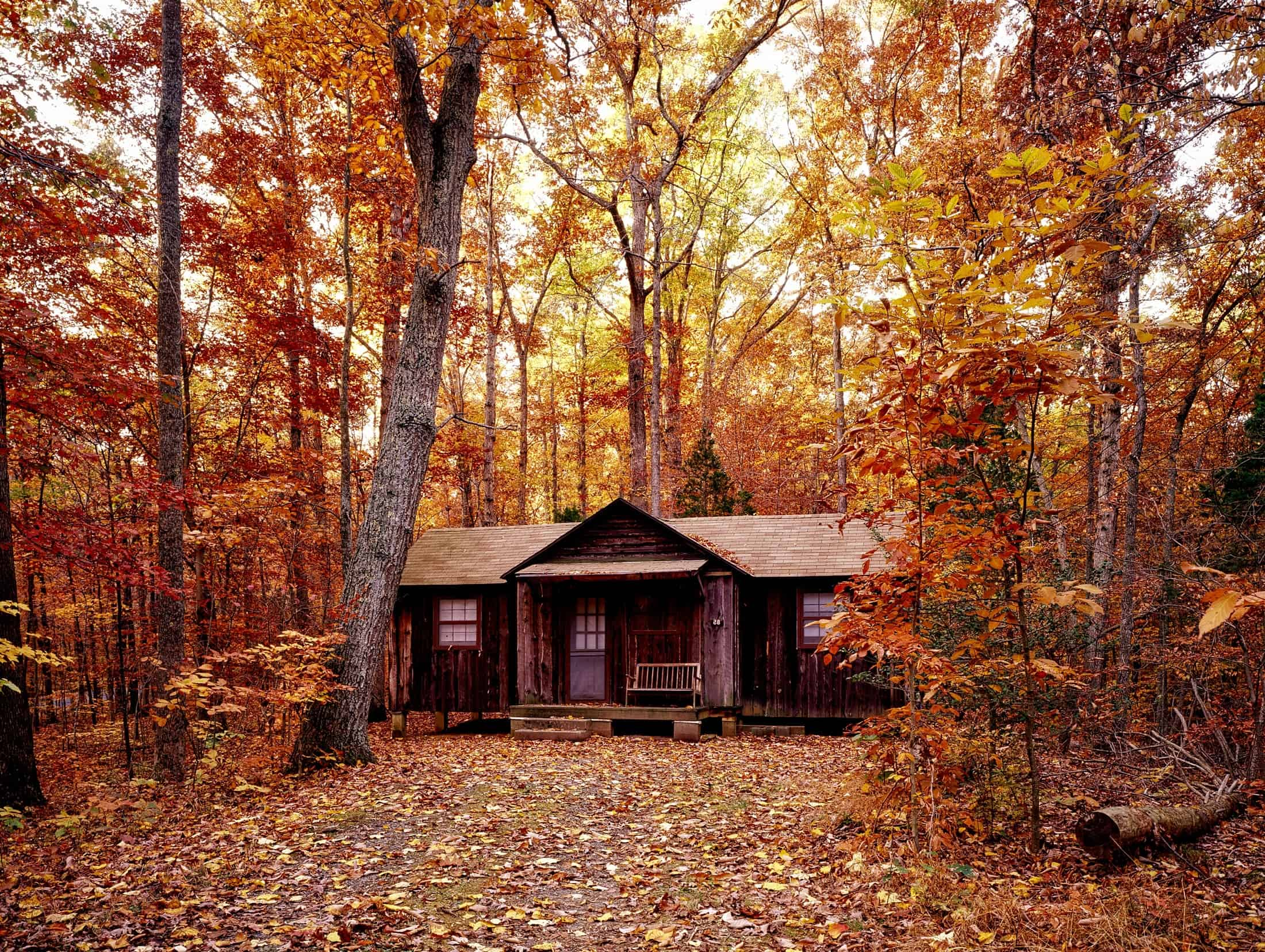 Government Lease Cabin